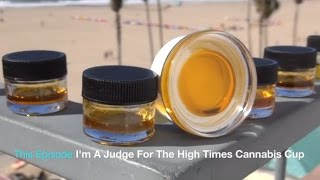 Video CBD Hash Oil is Amazing! I'm A Judge For The High Times Cannabis Cup! Part 1 (behind the scenes) download MP3, 3GP, MP4, WEBM, AVI, FLV Oktober 2018