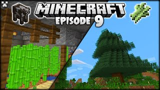The Minecraft CHRISTMAS Tree & Book Factory! | Python Plays Minecraft Survival [Episode 9]
