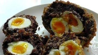 SCOTCH EGGS  How to make & cook with black pudding recipe