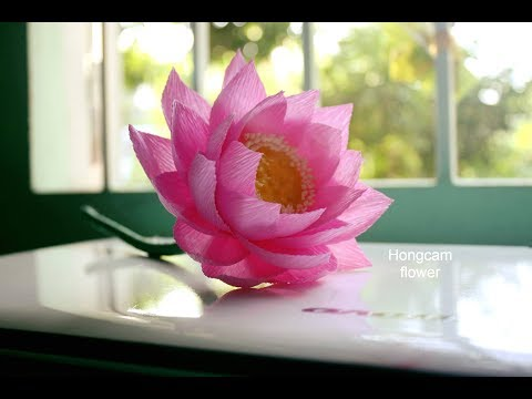 How to make Lotus flower from crepe paper