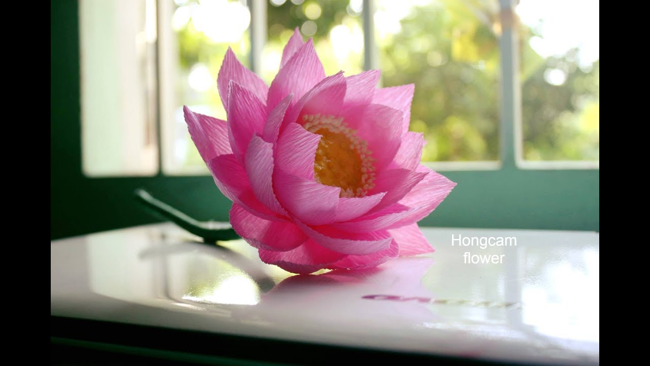 How to make lotus flower from crepe paper youtube for How to make a lotus with paper
