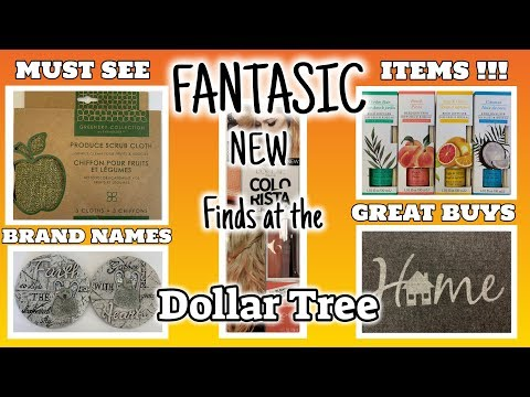 FANTASTIC NEW Finds at the DOLLAR TREE | BRAND NAME Items