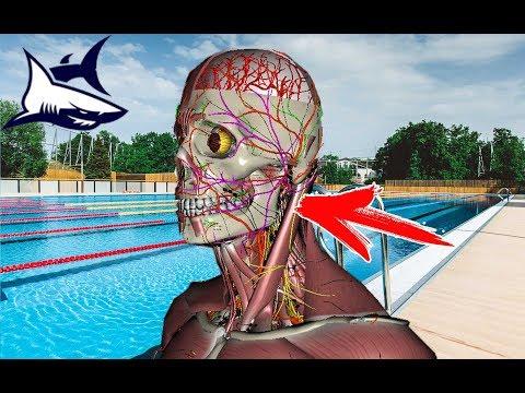Почему после плавания болит голова