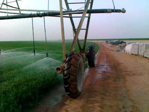 Almarai Agriculture