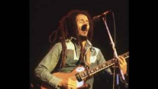 Bob Marley and the Wailers - Work live at the Bourget 1980 ( France) SBD
