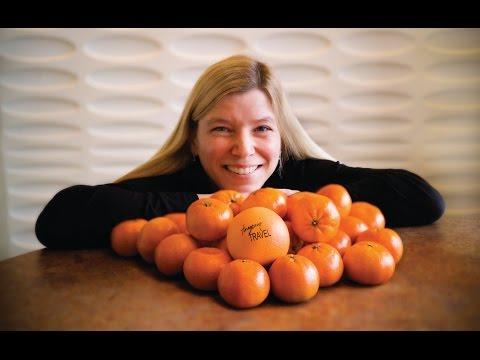 Tangerine Travel & Kelley-Ross Intro Video