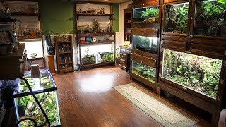 you-ve-never-seen-my-animal-room-like-this-update