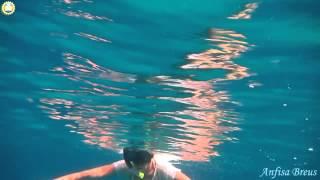 Видео путешествия в деталях.Азия.174.Морская черепаха.Perhentian Island Resort.Malaysia.(, 2015-02-02T16:53:55.000Z)