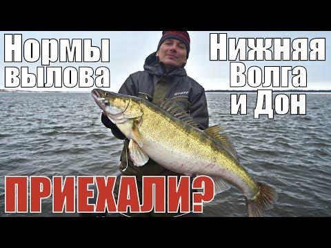 НОРМЫ вылова рыбы на НИЖНЕЙ ВОЛГЕ в Астраханской и Волгоградской областях. Закон о рыбалке 2019