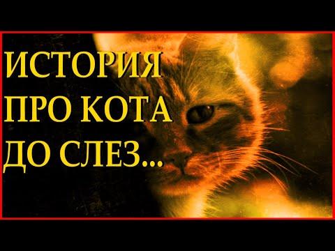 """""""Уродливый кот"""" - Игорь Мазунин Читает Леонид Юдин"""