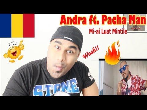 ANDRA -  Mi-ai Luat Mintile (feat. Pacha Man) | ROMANIAN MV REACTION | Aalu Fries