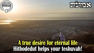 A true desire for eternal life | Hitbodedut helps your teshuvah!