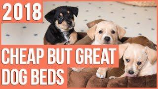 TOP 17 Cheap Dog Beds 2018 | Cheap But Great