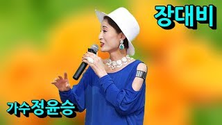 가수정윤승장대비 2019한류가요문화예술제 2019한류문…