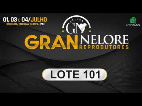 LOTE 101