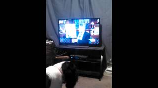 Dog growls at Andy Cohen picture