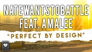 NateWantsToBattle - Perfect by Design feat. AmaLee ( Lyric) on iTunes & Spotify