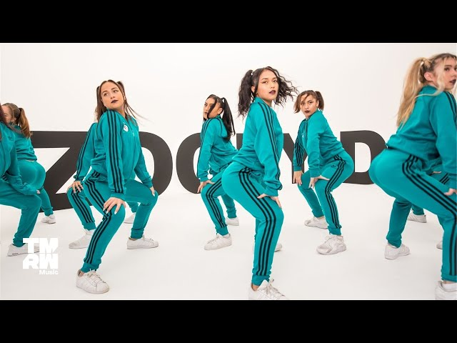 Savage & Tigermonkey - Zooby Doo (Official Video feat. ReQuest Dance Crew)