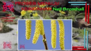 Ament Planting A Tree – Meta Morphoz