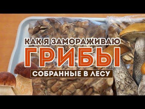 Как лучше заморозить грибы сырыми или вареными