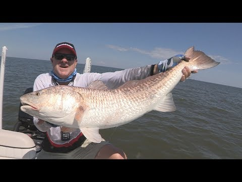 FOX Sports Outdoors SouthWEST #37 - 2017 Gulf Shores Alabama Bull Redfish & Black Drum