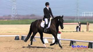 209D Tracy Alves on Desert Pearl SR Novice Dressage FCHP February 2015