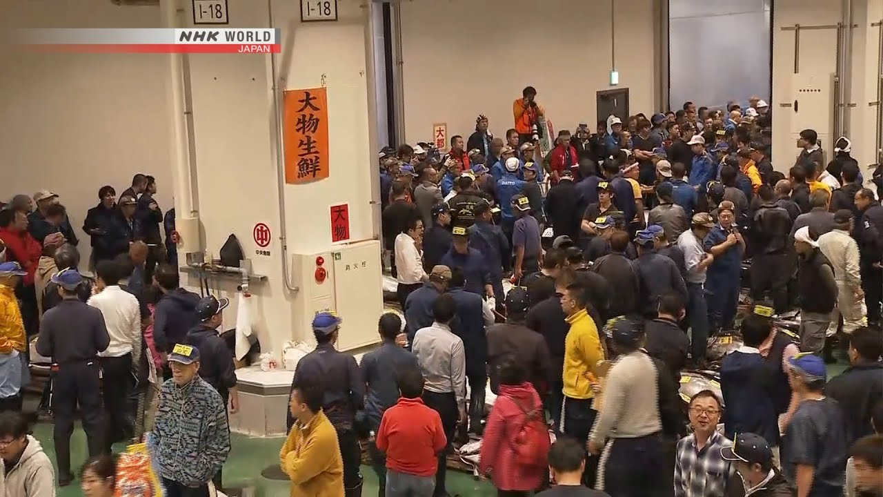 Photo of Toyosu Market Opens for Business – video