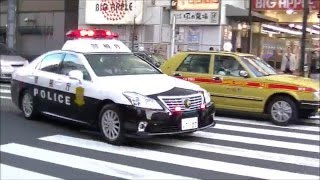 迫力!!警察署から2台連続で緊走で出て行くパトカー!