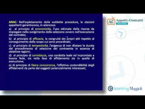 Il nuovo codice dei contratti pubblici - Le procedure sotto soglia