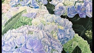 Have Faith In A Sunny Place- Premium Hydrangea- Timelapse Art Video By HSIN LIN ART