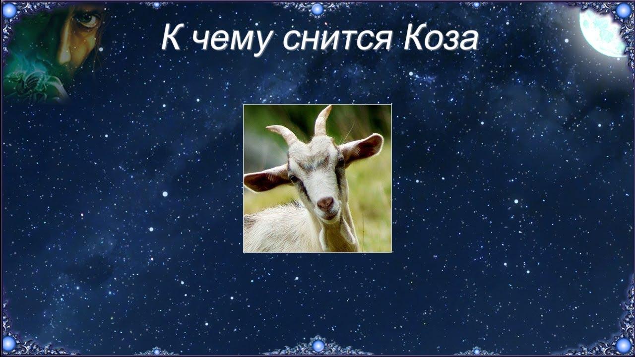 К чему снится Коза (Сонник)