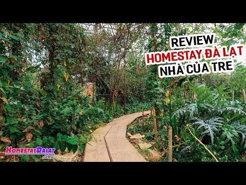 Review Nhà Của Tre House Homestay Đà Lạt | Khu Vườn Bí Mật Tuyệt Vời