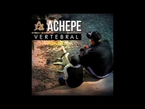 Achepe Vertebral (Disco Completo)