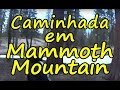 Caminhada em Mammoth Mountain