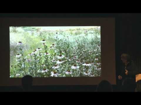 Landscape Lectures: Eelco Hooftman