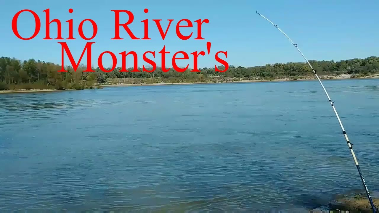 Ohio river fishing mcalpine reserve louisville kentucky for Ohio fishing report 2017