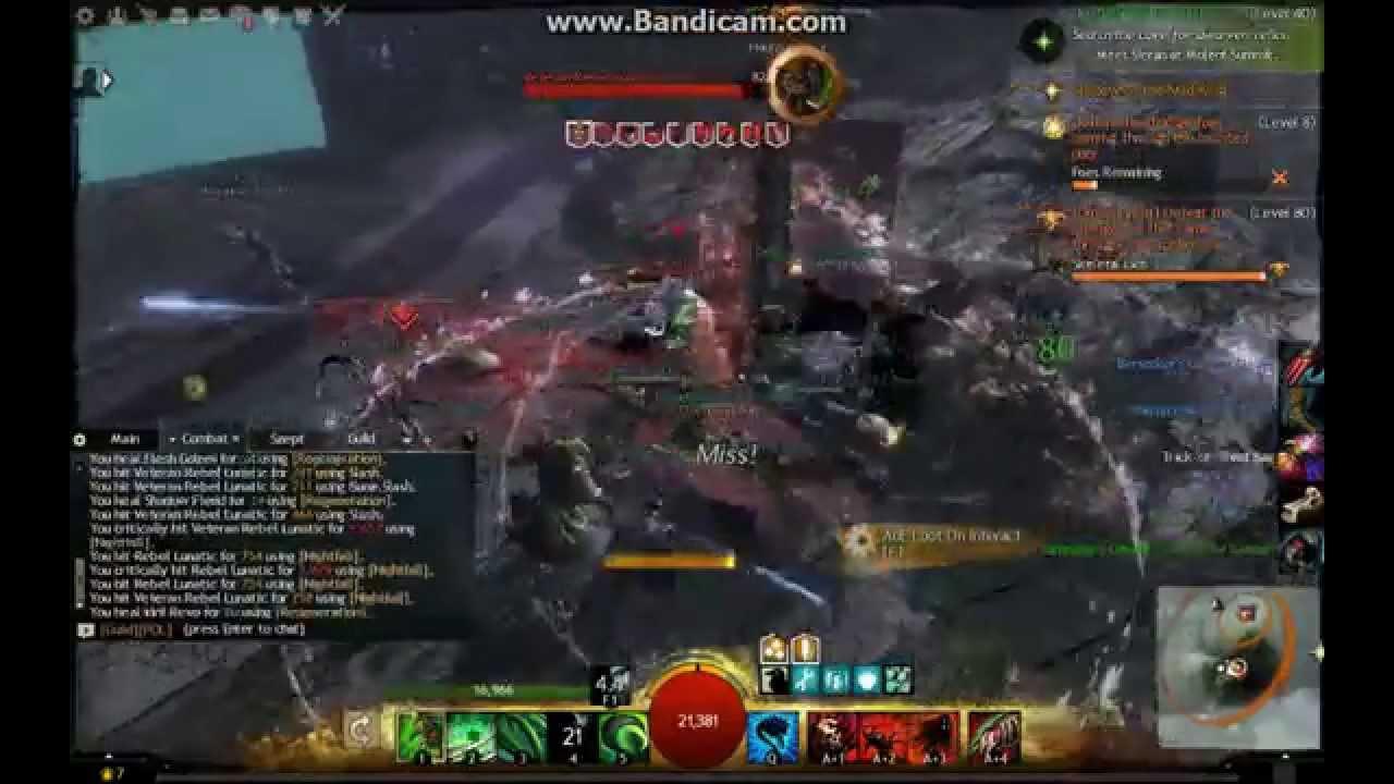 Guild Wars  Minion Master Build