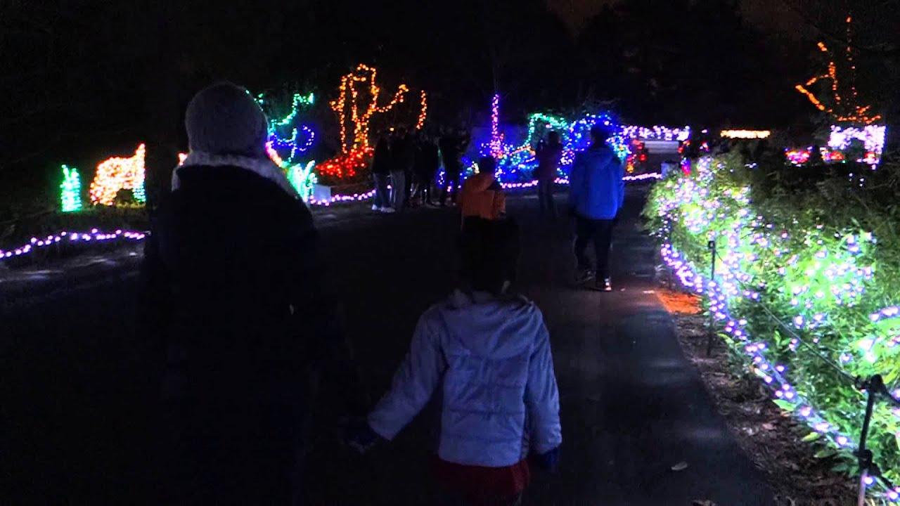 Christmas Lights Woodland Park Zoo