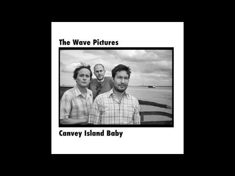 The Wave Pictures - Down by the Waterside