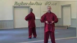 Qigong Ausbildung - DVD - www.qigongonline.de