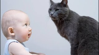 Try not to laugh   Baby and Cat Funny Fails   2020 Funny Baby videos