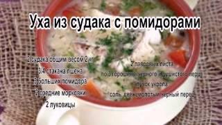 Вкусные супы фото.Уха из судака с помидорами