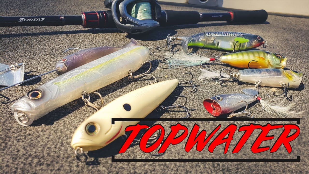 Fall Topwater For Bass | Everything You Need To Know + Underwater Footage!