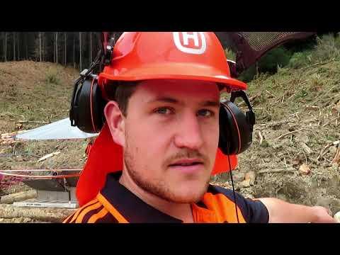 New Zealand logging pt.2 2018