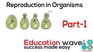 Reproduction in organism biology chapter 1 cbse class 12 hindi part-1 playlist link : http://bit.ly/2xfm1yz ✔ 📘 handmade notes av...