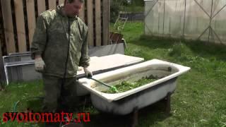 Травяной настой для подкормки растений
