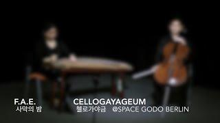 첼로가야금 CelloGayageum - 사막의 밤 F.A.E.