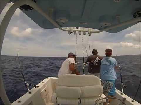 Marsh Tacky Carbon Fiber Gaff Fishing 8-16-15