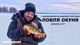 видео Ловля окуня зимой со льда - где искать окуня, какой снастью ловить окуня и Тактика ловли окуня на мормышку