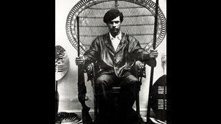 BLACK POWER scientific socialism and HUEY P NEWTON.